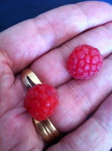First raspberries